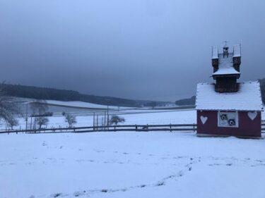 【道草日記】ドイツは雪が積もったらしい。
